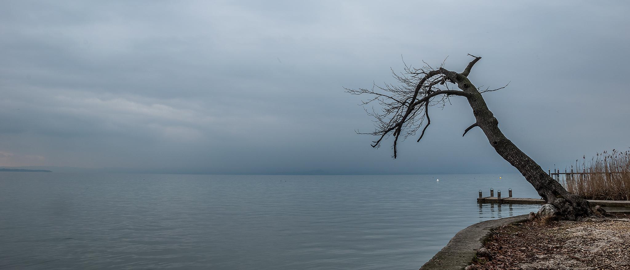 Una grigia giornata d'inverno..