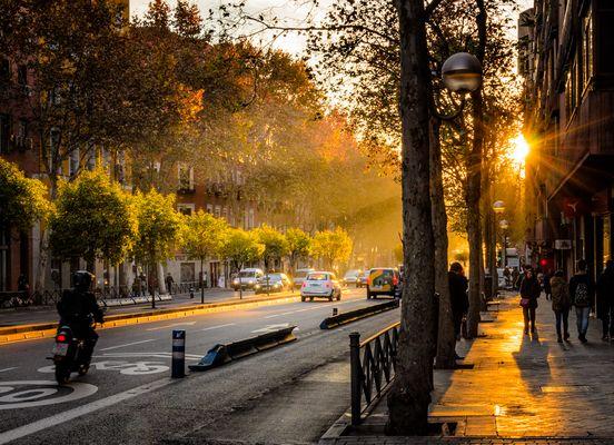 Una mañana de Madrid