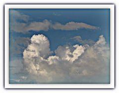 Una papera. nel cielo...