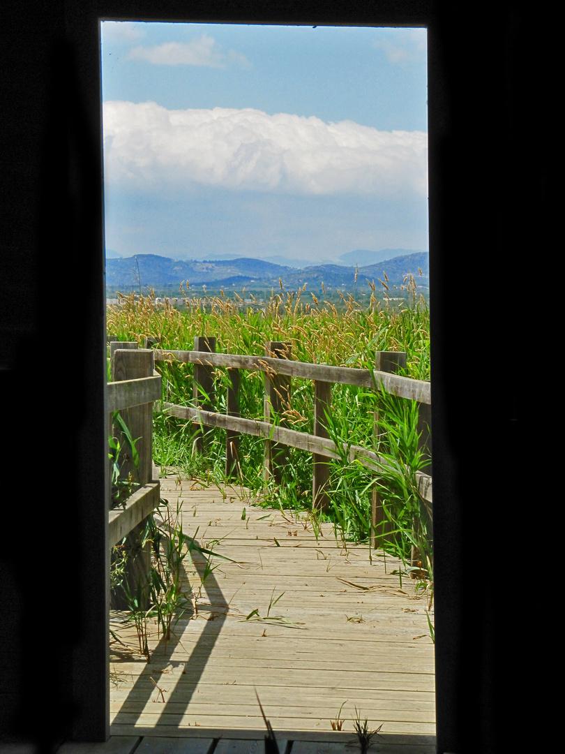 Una puerta a la naturaleza