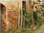"""Una strada """"esotica"""" a Colle Val D'elsa"""