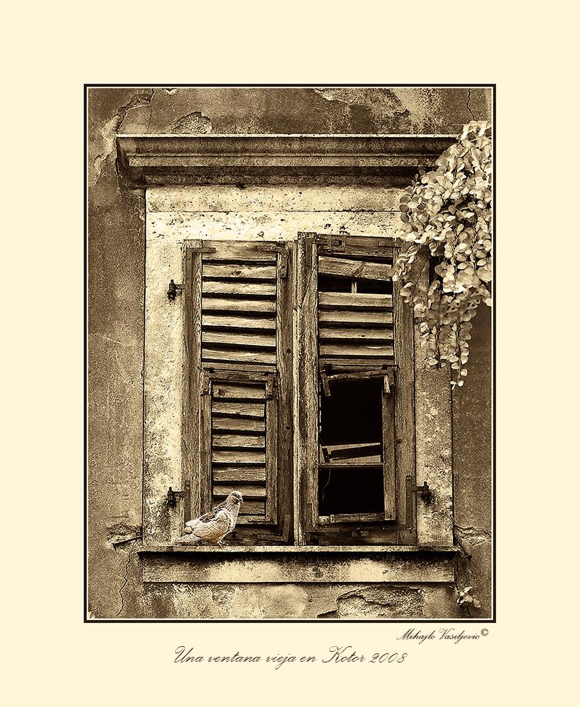 Una ventana vieja en Kotor 2008