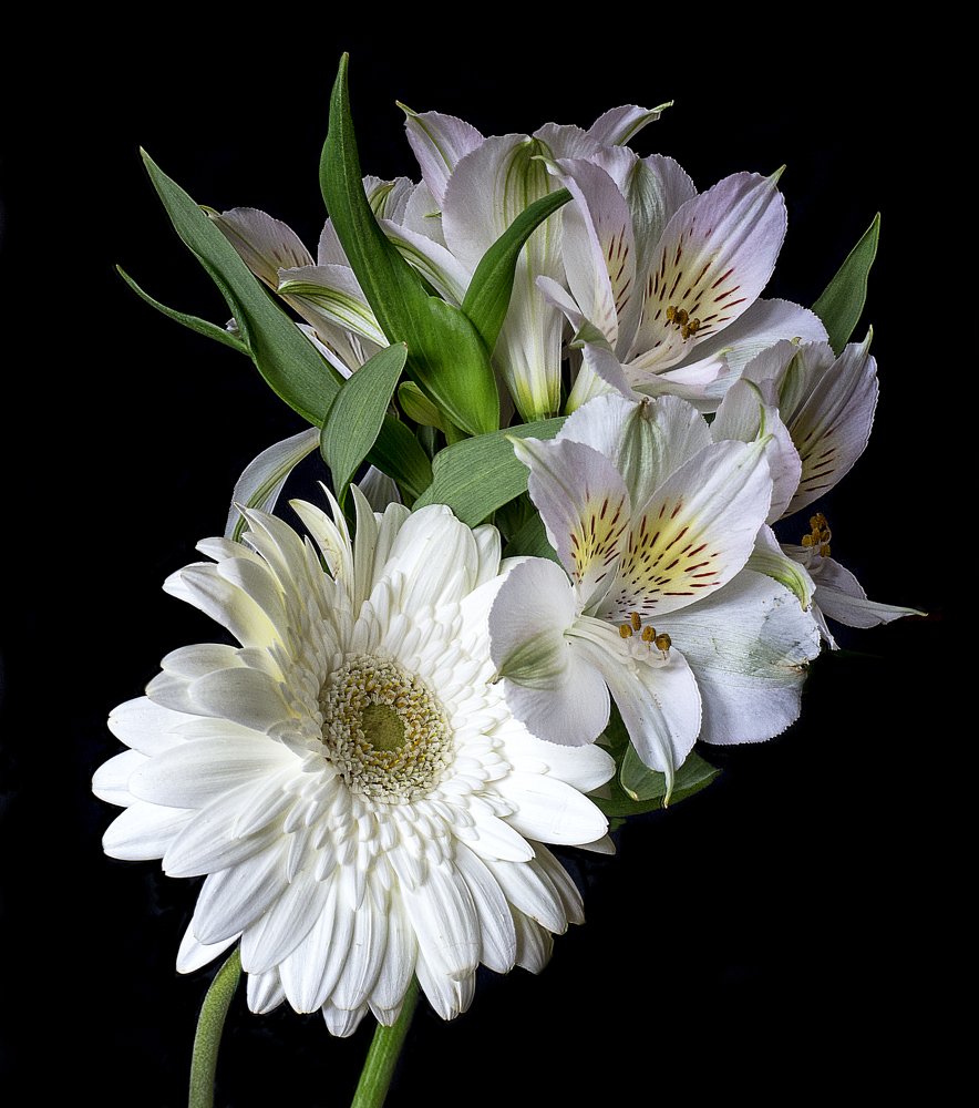 Fantástico Flores Para Uñas Foto Galería - Ideas de Pintar de Uñas ...