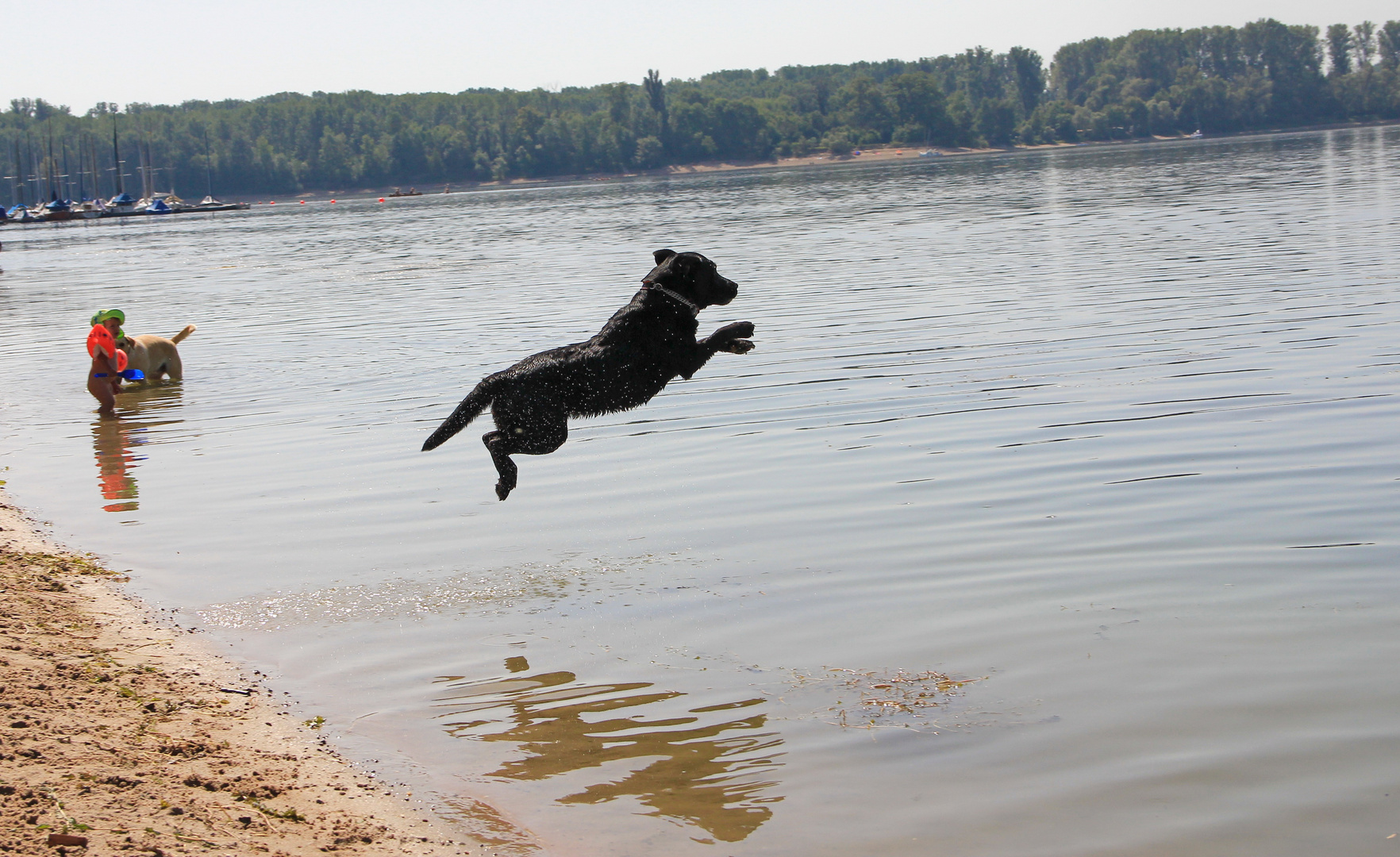 Und ab ins Wasser