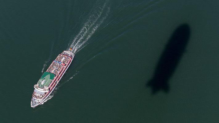 """""""...und an der Backbordseite sehen sie einen Grauwal, meine Damen und Herren......"""""""