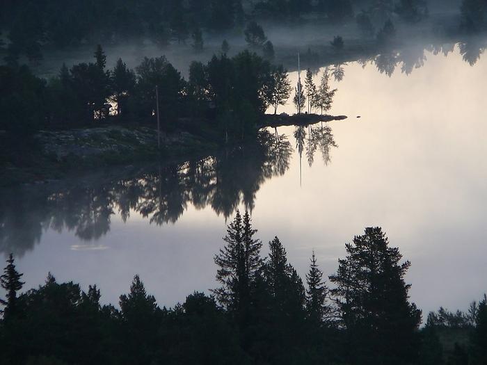 ...und aus den Wiesen steiget der weiße Nebel, wunderbar