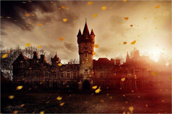 * ... und der Herbst beginnt... *