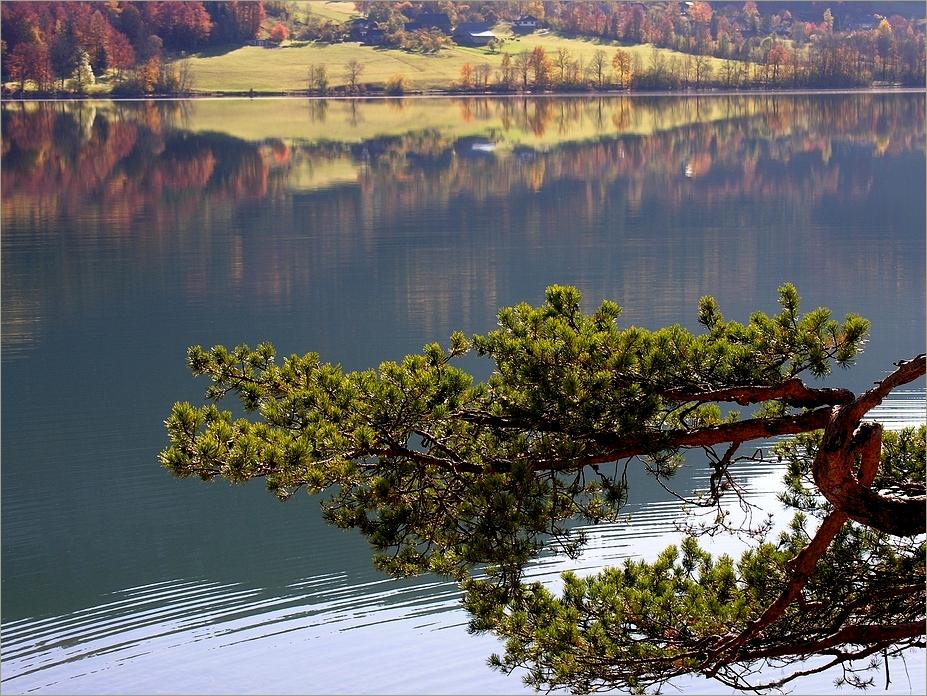 ... und der Herbst beginnt.