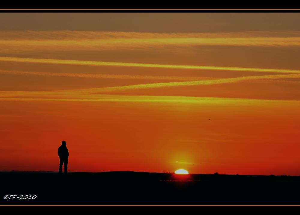 ... und die Gedanken fliegen der Sonne hinterher ...