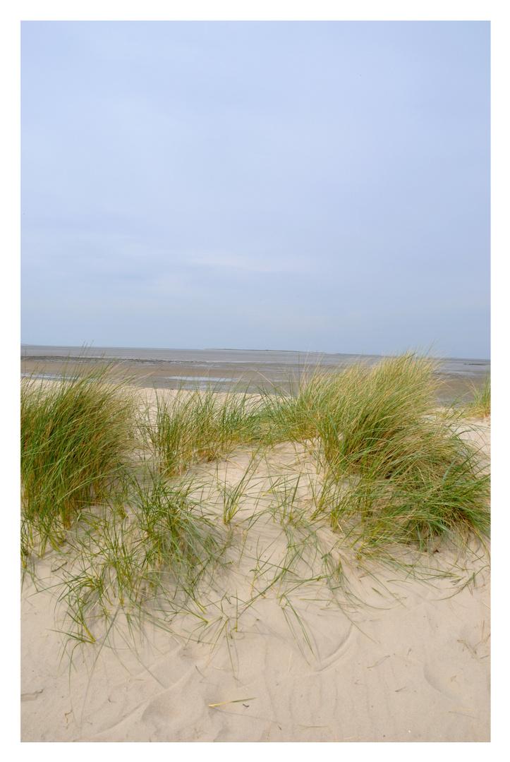 ...und dort hinter den Dünen...
