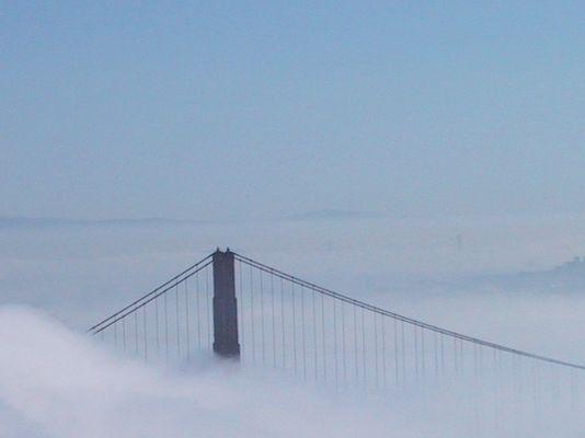 ... und einmal im Nebel