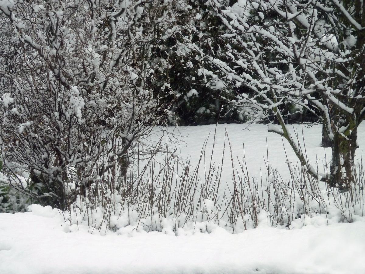 und  heute Schnee