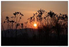 Und immer wieder geht die Sonne auf ...