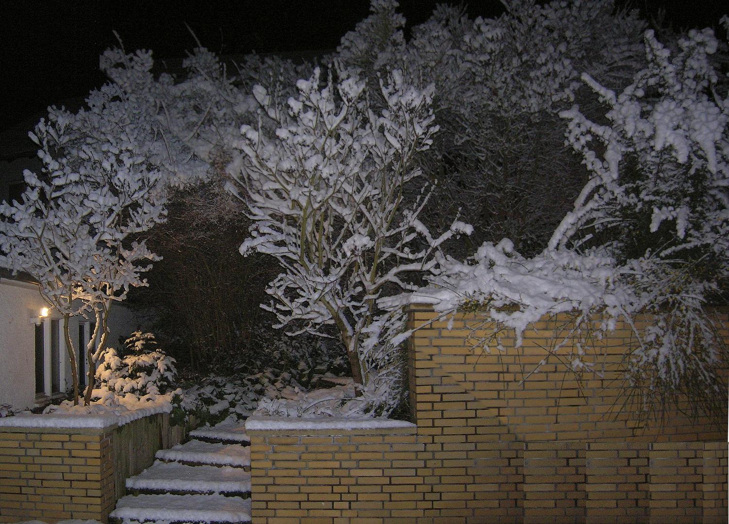 Und immer wieder neuer Schnee ...