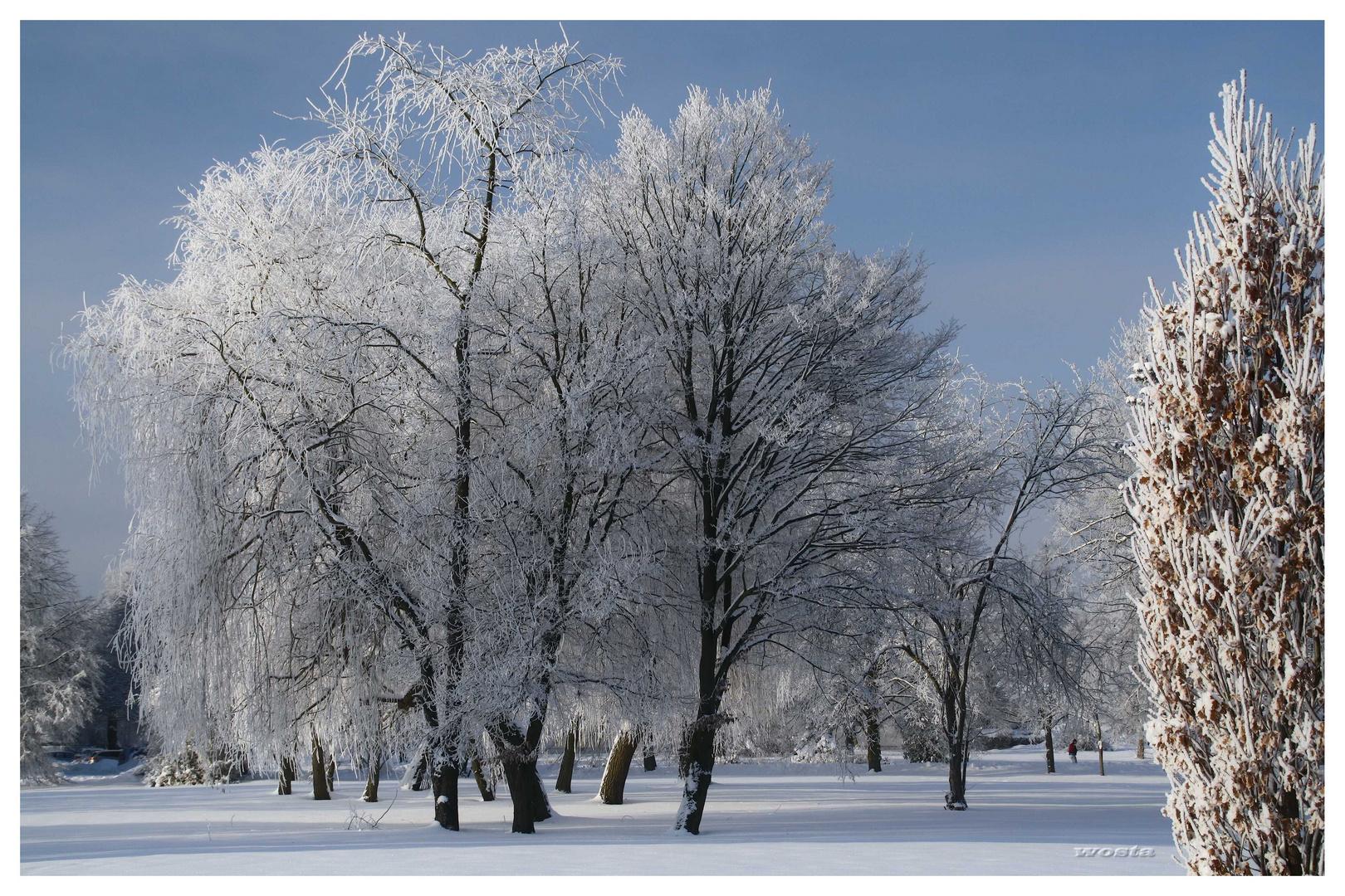 .... und minus 14 Grad (1)