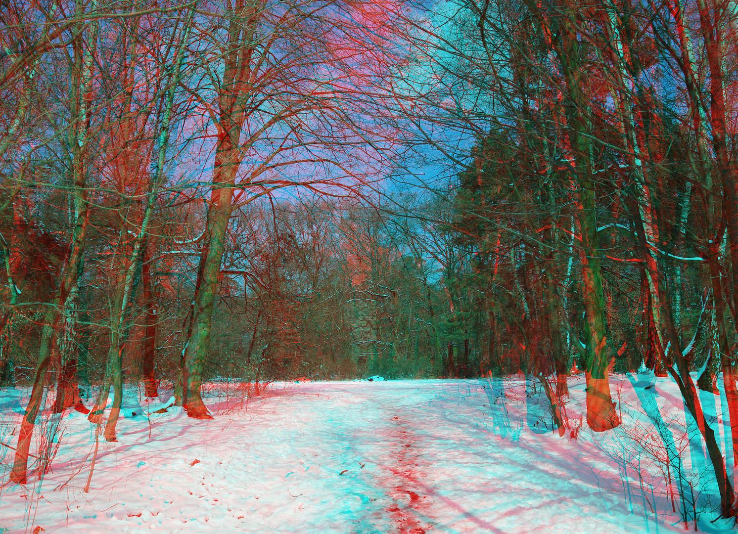 Und noch ein Winterbild.....weil's so schön ist