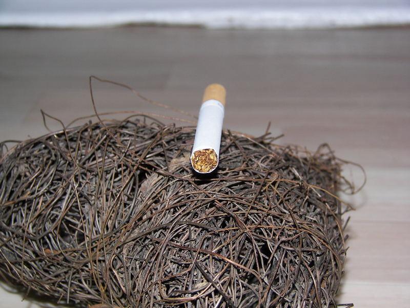 Und noch immer die Zigarette