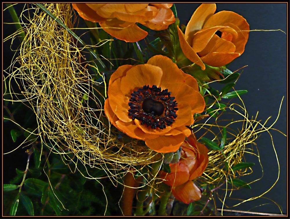 und nochmal Anemone...