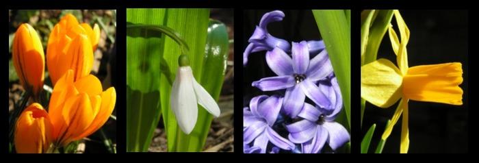 und nochmal Frühling ;-)