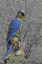 Und nochmal: Papagei der Nymphenburger Porzellanmanufaktur