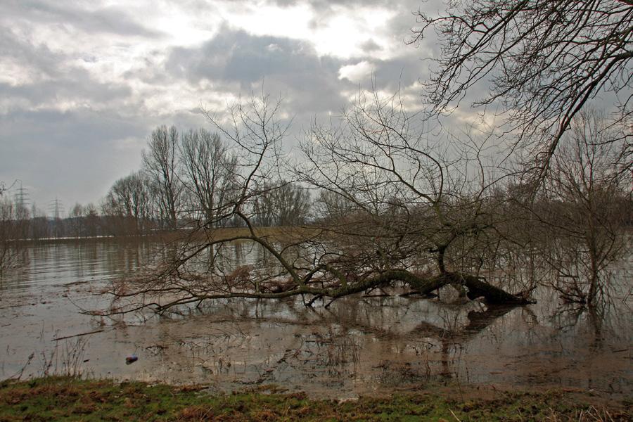 Und so bei Hochwasser