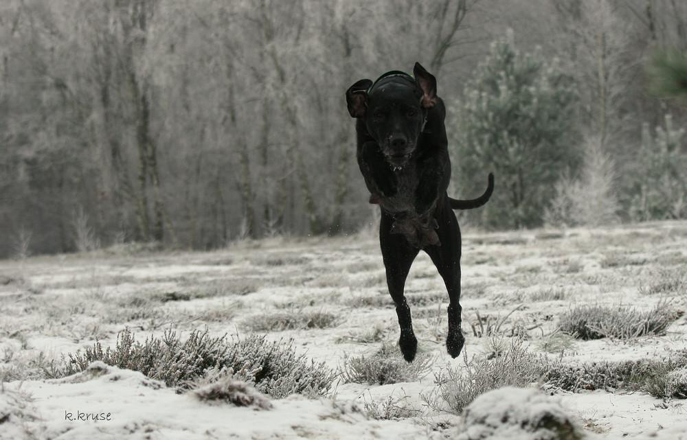 ....und sprung!!