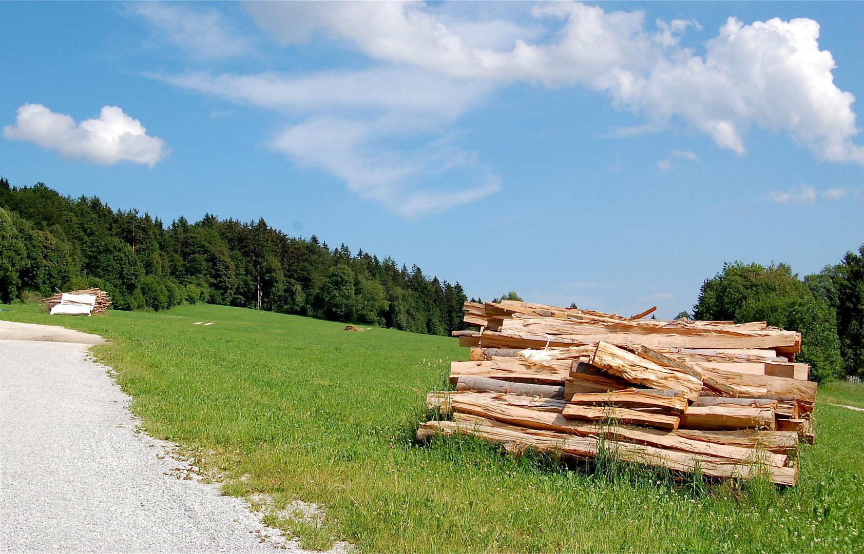 Und überall liegen Holzstapel…
