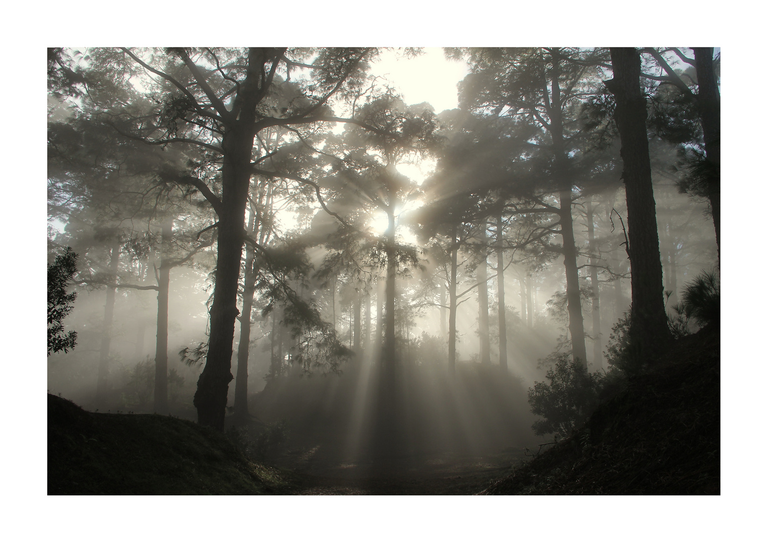 Und weit liegt im Nebel
