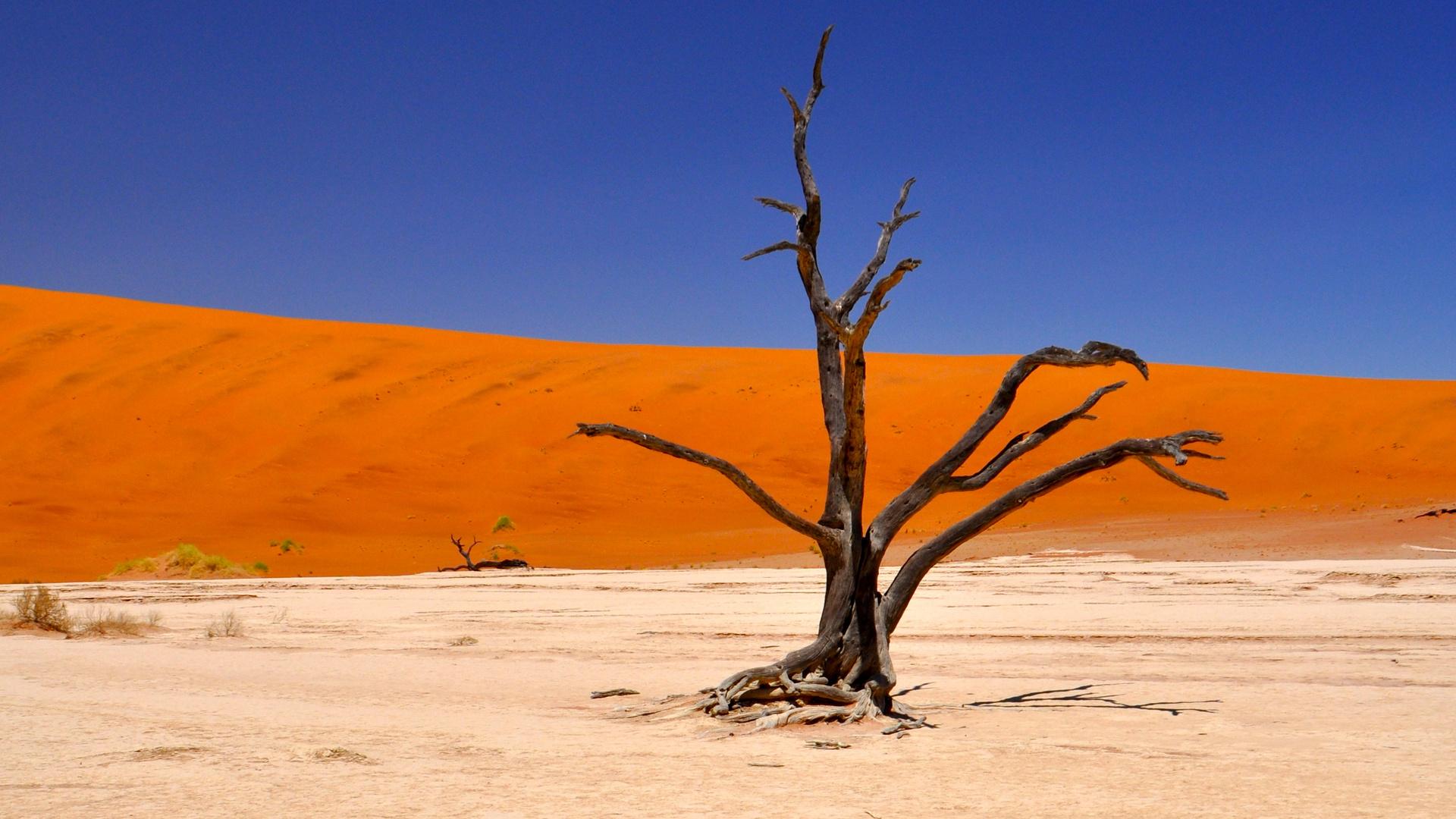 Und wieder Sossusvlei Namibia