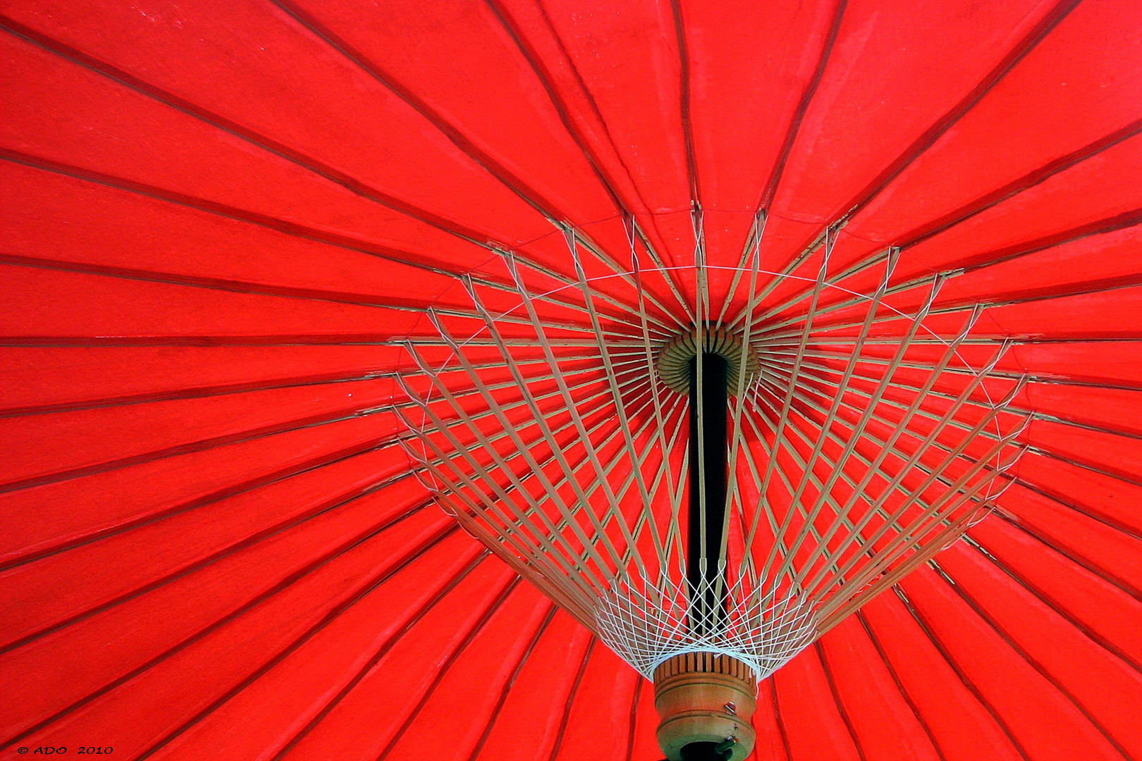 Under the Chinese Umbrella