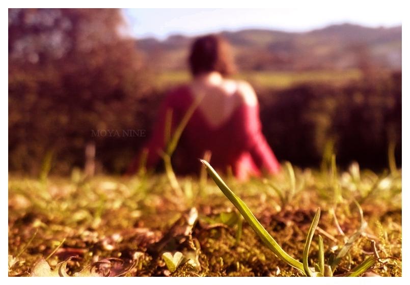 Under the sun~