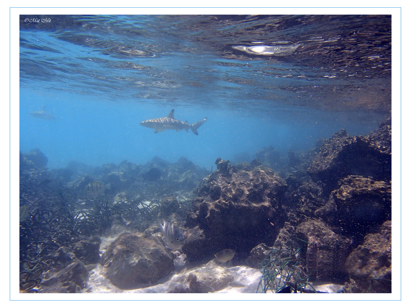 under water 15