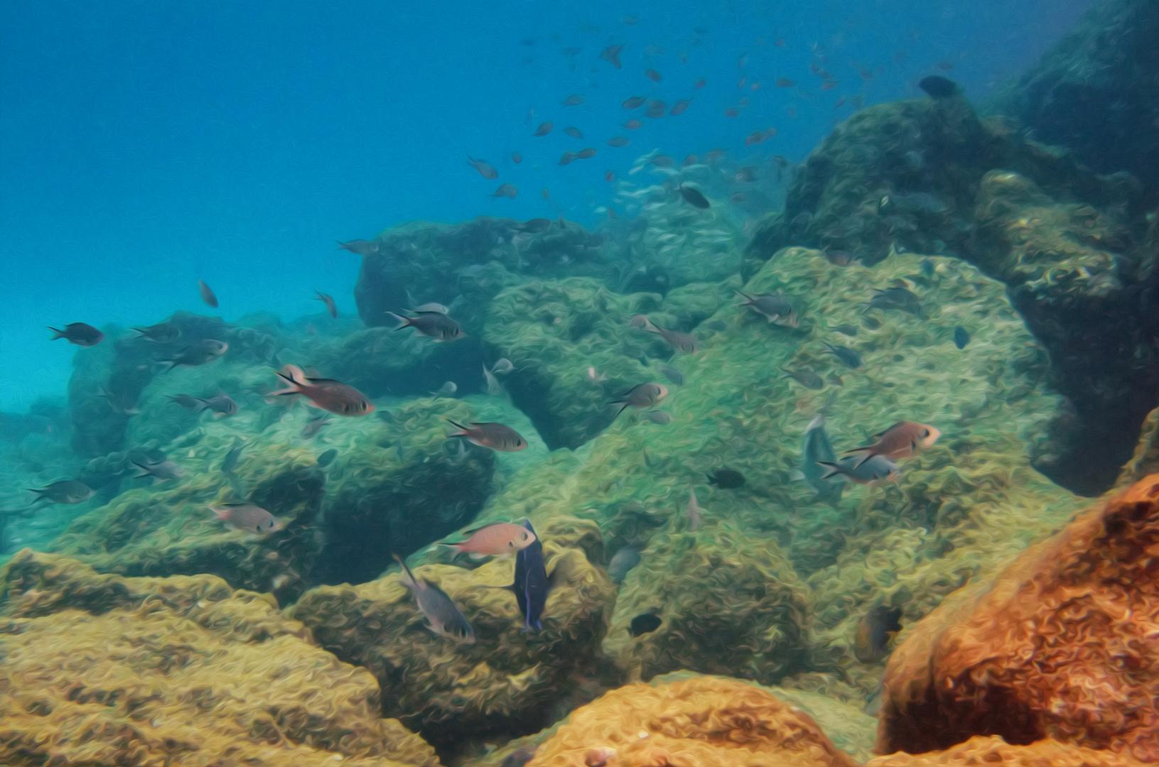 Underwater Dreamworld
