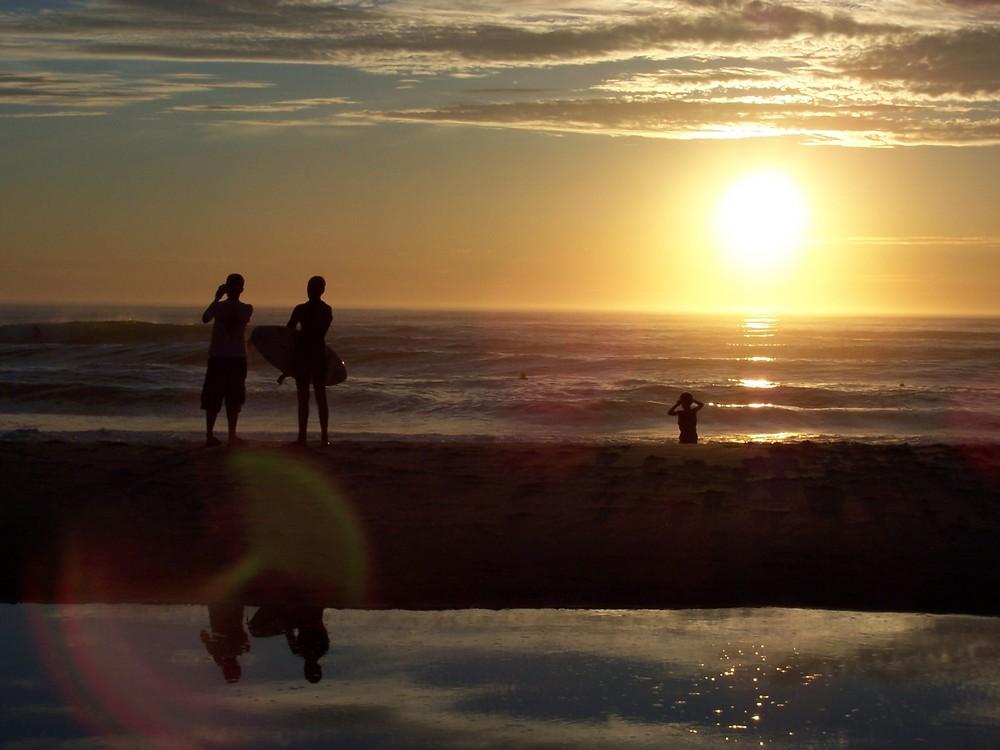 Une bande de copains surfeurs