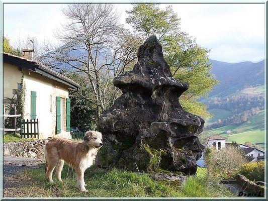 Une belle pierre et un copain de balade.