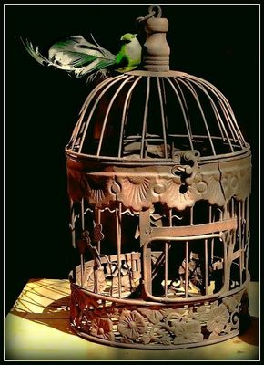 Une cage ancienne