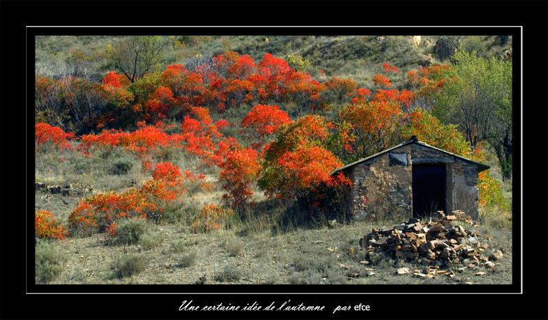 Une certaine idée de l'automne