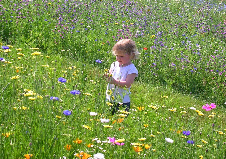 Une fleur parmi les fleurs Ma Beauté