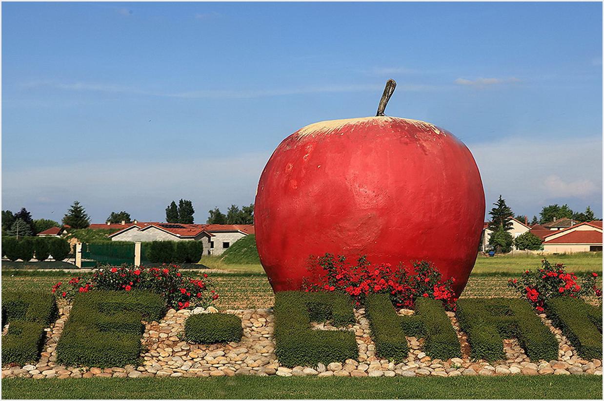 une grosse pomme