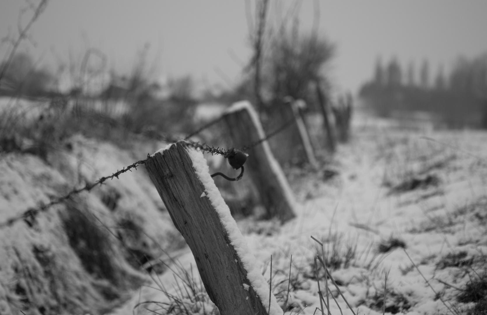 Une journée d'hiver