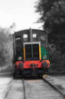 une locomotive dans les bois