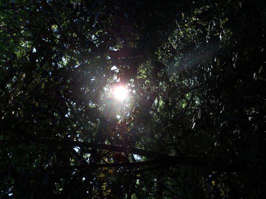 une lumière traversant l'ombre