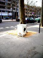 Une machine a lavé au milieu de la rue? C'est toutou qui en profite!