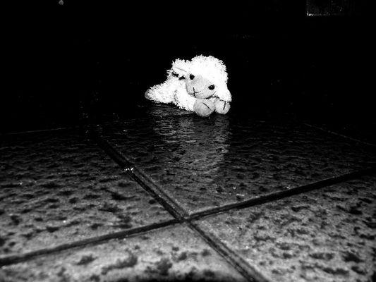 Une nuit, oublié sous la pluie...