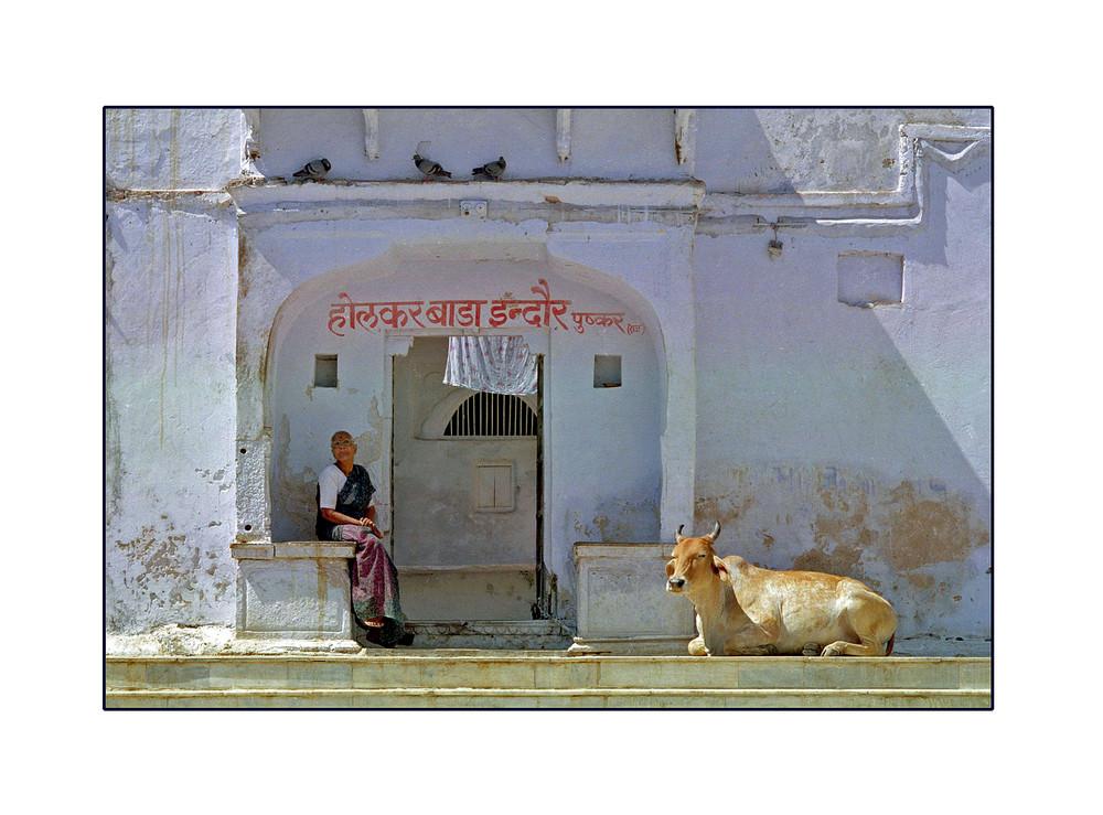Une Pause à Pushkar