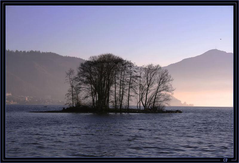 Une petite île au Lac de Zoug