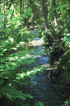 Une petite rivière