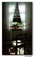 Une place au soleil / Ein Platz an der Sonne