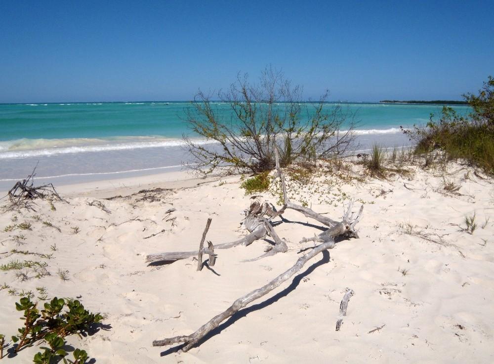 une plage au paradis