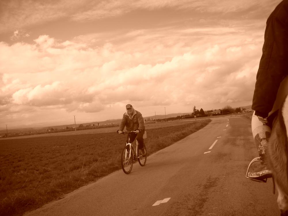 Une promenade dans les chemins de campagne
